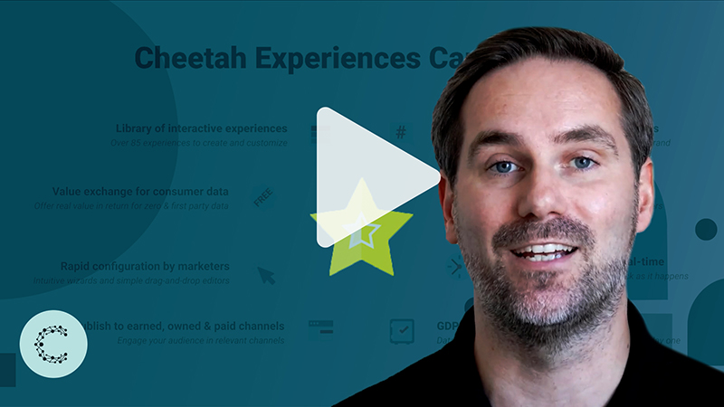Tips From the Experts: Cheetah Experiences — Exploring the Top 5 Programs of 2020