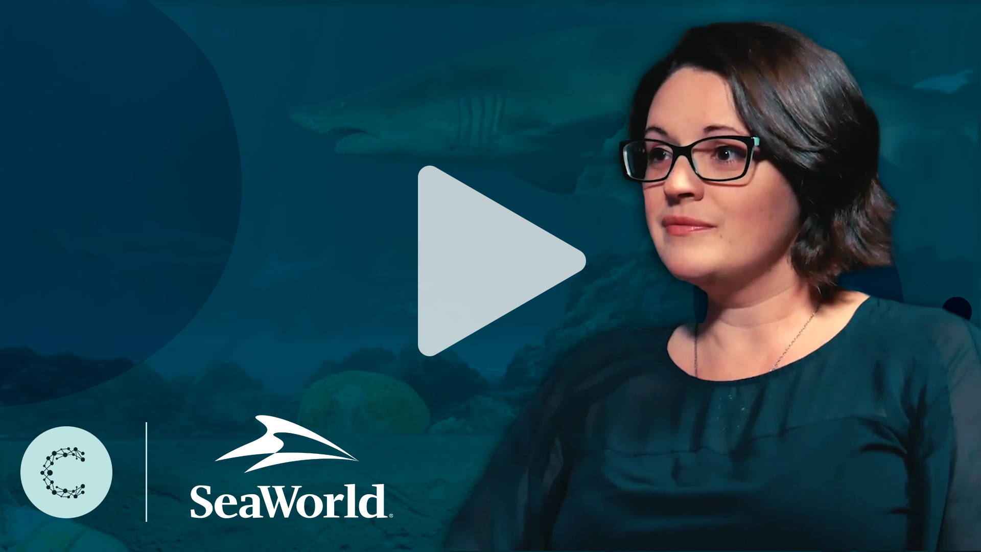 Client Success: Leveraging Data for More Effective Email Personalization at SeaWorld