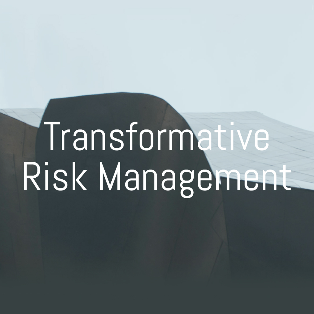 Transformative Risk Management